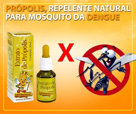 propolis-lambertucci-contra-dengue