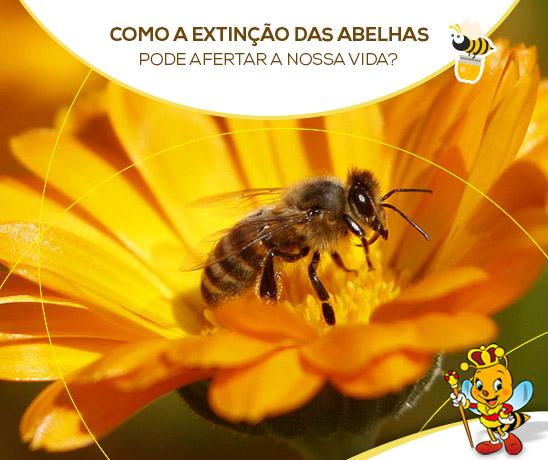 extincao-abelhas