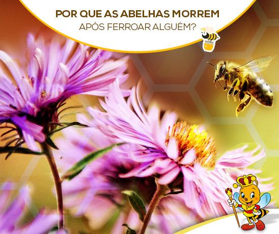 porque-as-abelhas-morrem