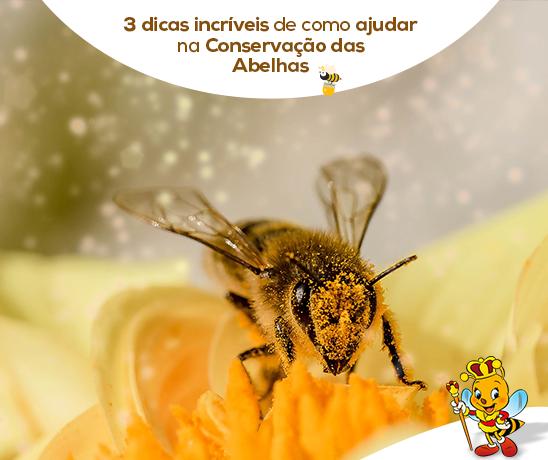 3-dicas-incriveis-de-como-ajudar-na-conservacao-das-abelhas