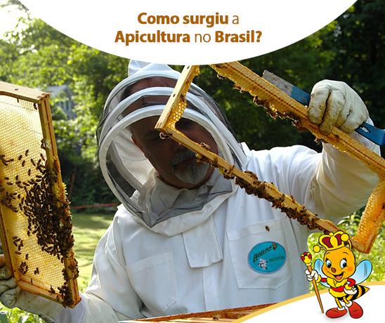 como-surgiu-a-apicultura-no-brasil