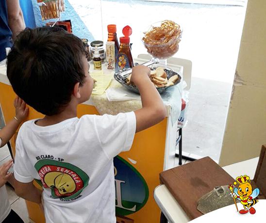 casa-aberta-colegio-purissimo-apiarios-lambertucci-3