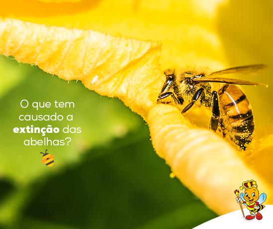 extincao-das-abelhas