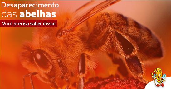 desaparecimento-de-abelhas