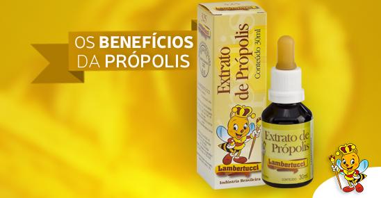 extrato-da-propolis-lambertucci